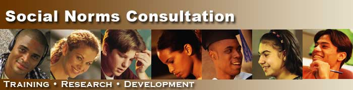 Social Norms Consultation